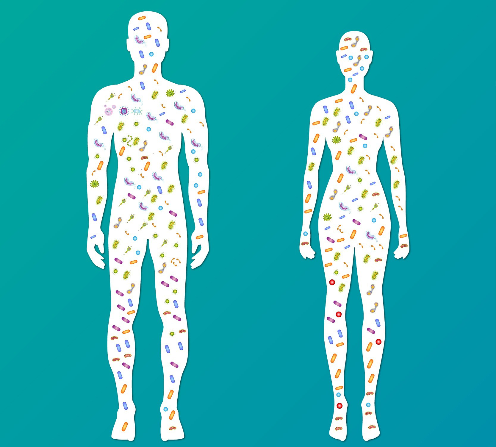 Microbiome graphic